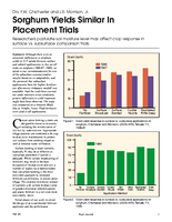 Sorghum Yields Similar In Placement Trials