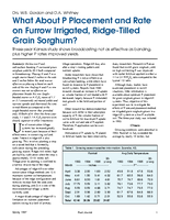 What About P Placement and Rate on Furrow Irrigated, Ridge-Tilled Grain Sorghum?