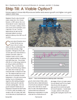 Strip Till: A Viable Option?