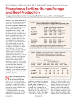 Phosphorus Fertilizer Bumps Forage and Beef Production