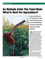 As Biofuels Enter The Food Chain What Is Next For Agriculture?
