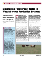Maximizing Forage/Beef Yields In Wheat/Stocker Production Systems