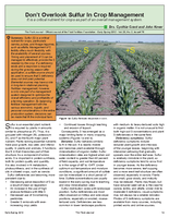 Don't Overlook Sulfur in Crop Management