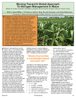 Moving Toward A Global Approach To Nitrogen Management In Maize
