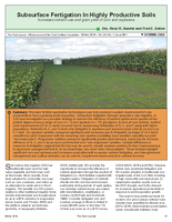 Subsurface Fertigation In Highly Productive Soils