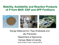 Availability and Reaction Products of P from MAP, DAP and APP Fertilizers