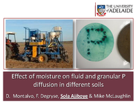 Effect of moisture on fluid and granular P diffusion in different soils