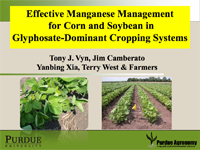 Effective Manganese Management for Corn and Soybean in Glyphosate-Dominant Cropping Systems