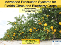 Advanced Production Systems for Florida Citrus and Blueberry Crops