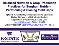 Balanced Nutrition and Crop Production Practices for Sorghum Nutrient Partitioning & Closing Yield Gaps