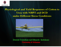 Physiological and Yield Response of Cotton to Urea with NBPT and DCD Under Different Stress Conditions