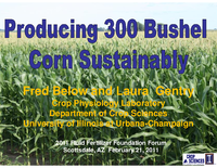 Producing 300 Bushel Corn Sustainably