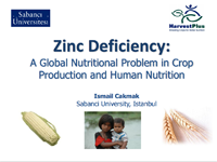 Zinc Deficiency: A Global Nutritional Problem in Crop Production and Human Nutrition