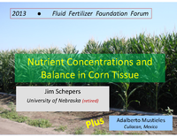 Nutrient Concentrations and Balance in Corn Tissue