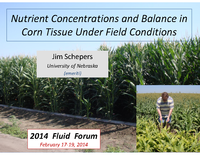Nutrient Concentrations and Balance in Corn Tissue Under Field Conditions