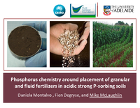 Phosphorus Chemistry Around Placement of Granular and Fluid Fertilizers in Acidic-strong P-absorbing Soils