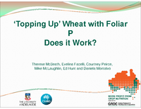 'Topping Up' Wheat with Foliar P Does it Work?