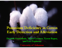 Potassium Deficiency in Cotton Early Detection and Alleviation
