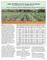 UAN, AN Effective For Sugarcane in Brazil