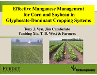 Effective Manganese Managementfor Corn and Soybean in Glyphosate-Dominant Cropping Systems