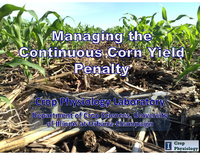 Managing the Continuous Corn Yield Penalty