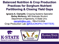 Balanced Nutrition and Crop Production Practices for Sorghum Nutrient Partitioning and Closing Yield Gaps