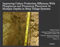 Improving Cotton Production Efficiency With Phosphorus and Potassium Placement At Multiple Depths in Strip Tillage Systems