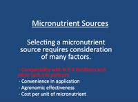 Micronutrient Compatibility