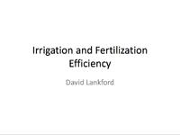 Irrigation and Fertilization Efficiency
