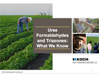 Urea Formaldehydes and Triazones: What We Know