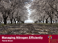 Managing Nitrogen Efficiently (tree crops)