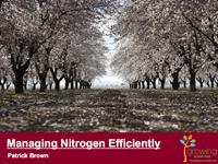 Managing Nitrogen Efficiently (tree crops)