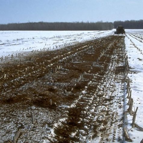 snow-_manure_spread