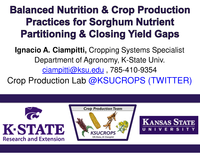 Balanced Nutrition & Crop Production Practices for Sorghum Nutrient Partitioning & Closing Yield Gaps
