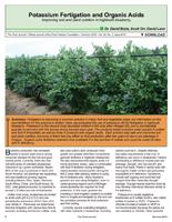 Potassium Fertigation and Organic Acids