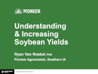 Understanding and Increasing Soybean Yields